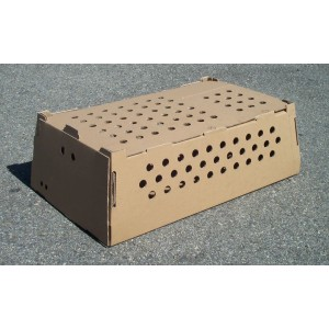 /3703-920-thickbox/emballage-carton-one-shot-plus-d-75-l-diminterieures-604-x-365-x-185-mm-h.jpg